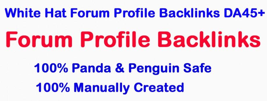 Skyrocket Website or Video With 30 White Hat Forum Profile Backlinks – DA45+